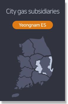 City gas subsidiaries - Yeongnam ES